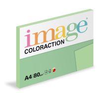 Kopírovací papír Coloraction A4 80g. FOREST - zelená pastel (100 listů)