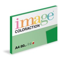 Kopírovací papír Coloraction A4 80g. DUBLIN - zelená sytá (100 listů)