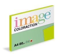 Kopírovací papír Coloraction A4 80g. JAVA - kiwi (100 listů)
