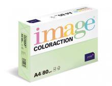 Kopírovací papír Coloraction A4 80g. JUNGLE - pastelově světle zelená (500 listů)