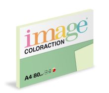 Kopírovací papír Coloraction A4 80g. JUNGLE - pastelově světle zelená (100 listů)